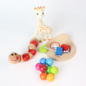 Infant Toy Bundle