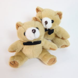 Twin Mini Bears